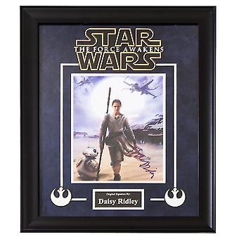 Star Wars - The Force Awakens Signed by Daisy Ridley - Framed Artist Series