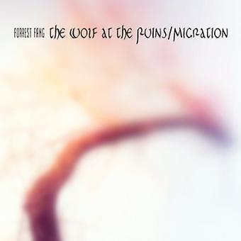 Forrest Fang - ulven på ruinerne/Migration (Speci [CD] USA import