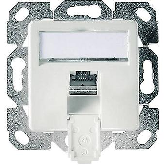 Network outlet Flush mount Insert with main panel CAT 6 1 port