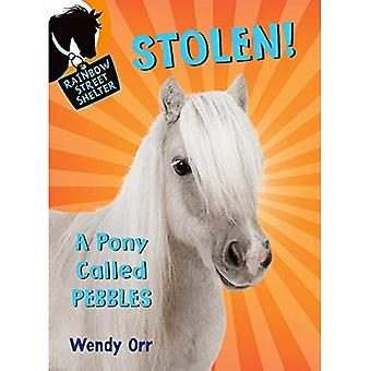 Stolen! a Pony Called Pebbles (Rainbow Street Shelter)