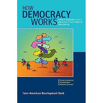 How Democracy Works: Political Institutions, Actors, and Arenas in Latin American Policymaking