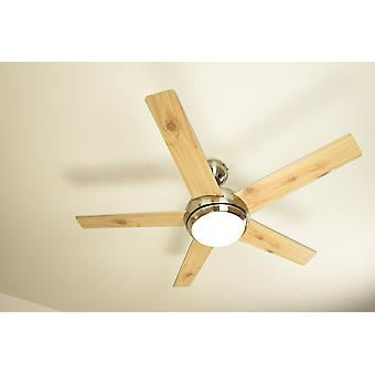 Ceiling fan FRESCO brushed nickel silver with remote control and light