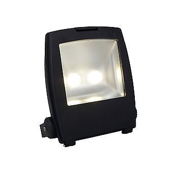 Ansell Mira commerciële LED Floodlight, 100W