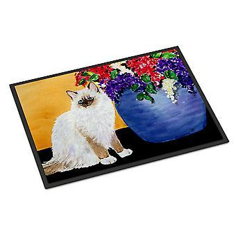 Carolines Treasures  SS8604MAT Cat - Ragdoll Indoor or Outdoor Mat 18x27 Doormat