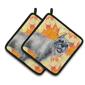 Carolines Treasures  BB9923PTHD Schnauzer Fall Pair of Pot Holders
