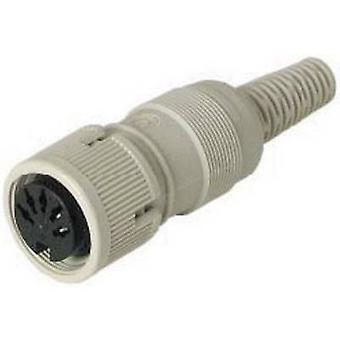 DIN connector Socket, straight Number of pins: 3 Grey Hirschmann MAK 3100S 1 pc(s)