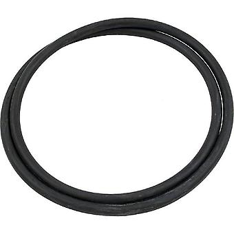 Pentair 178568 Tank O-Ring Replacement DM Pool and Spa Cartridge Filter