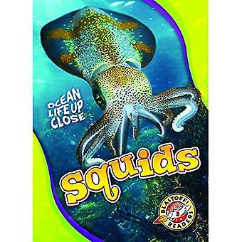 Squids (Ocean Life Up Close)