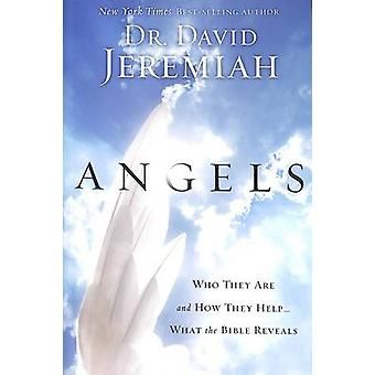 Angels - What the Bible Reveals About the Messengers of Heaven by Davi