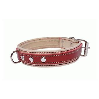 Sandimas Medium Double Collar 25X550 mm (Dogs , Walking Accessories , Collars)