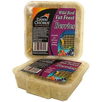 Dawn Chorus Fat Feast Berry (pakke med 12)