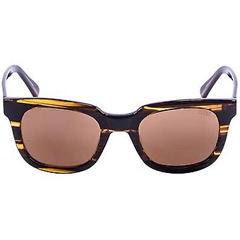 Ocean San Clemente Sunglasses - Brown/Brown
