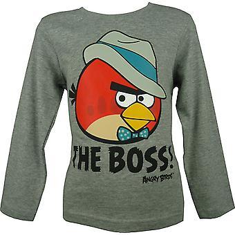 Boys Angry Birds Long Sleeve Top HO1209