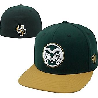 Colorado State Rams NCAA TOW Slam Flat Bill Stretch Fitted Hat
