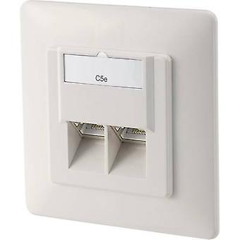 Nätverks uttag infällt fäste skär med huvud panel och RAM CAT 5e 2 portar digitus DN-9001-N ren vit