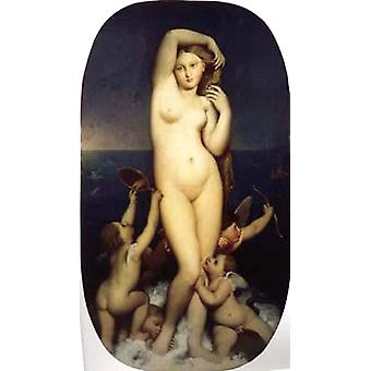La naissance de Vénus, Jean Auguste Dominique Ingres, 80x40cm
