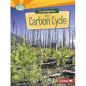 Investigating the Carbon Cycle (Searchlight Books What Are Earth's Cycles?)