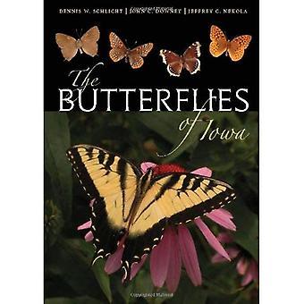 The Butterflies of Iowa (Bur Oak Book)