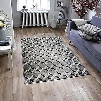Richmond 102 E  Rectangle Rugs Traditional Rugs