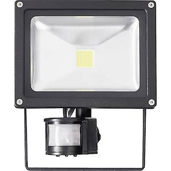 LED outdoor floodlight (+ motion detector) 20 W Cold white
