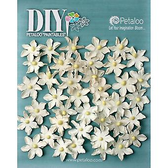 DIY Paintables Mulberry Pearl Daisies .75