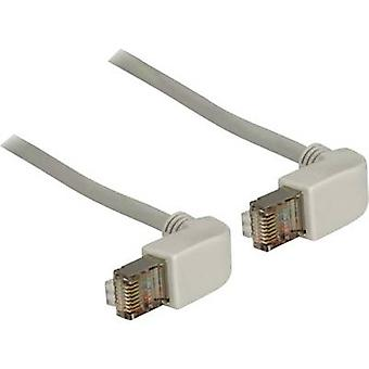 RJ45 Redes Cable CAT 6 gris de 2 m S/FTP Delock