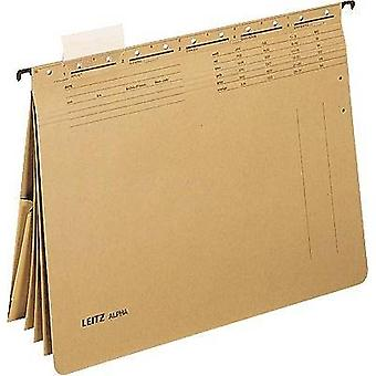 Leitz File display pocket 1983-00-00 250 gm² Ecru brown