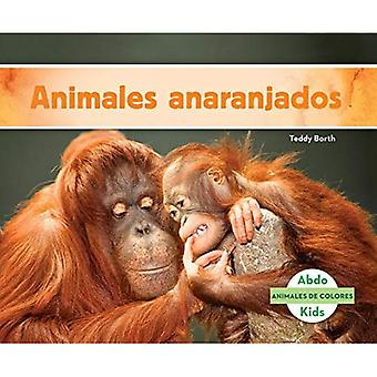 Animales Anaranjados (animaux Orange) (Animales de Colores (couleurs de l'Animal))