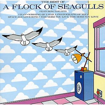 Flock of Seagulls - Best of Flock of Seagulls [CD] USA import