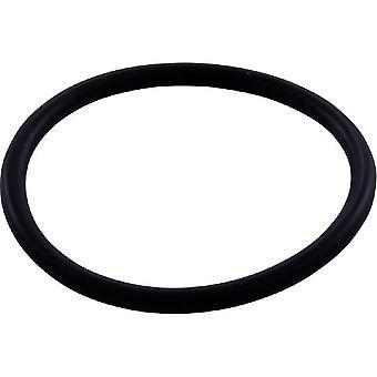 Jandy Zodiac R0544000 o-ring WMS superiore all'interfaccia Vactube