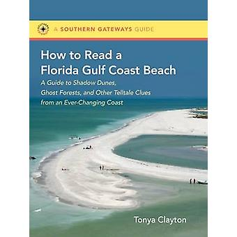 How to Read a Florida Gulf Beach - A Guide to Shadow Dunes - Ghost For