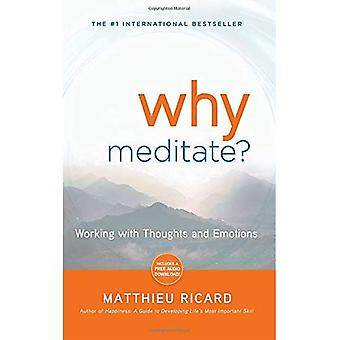 Why Meditate? [With CD