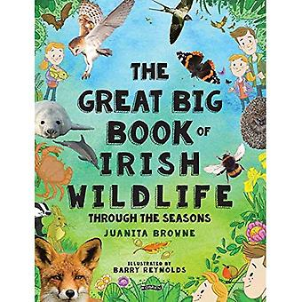 The Great Big Book of Irish Wildlife: Through the � Seasons