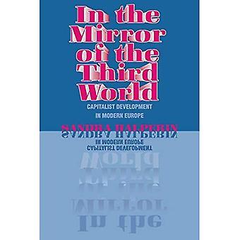 Im Spiegel der Dritten Welt