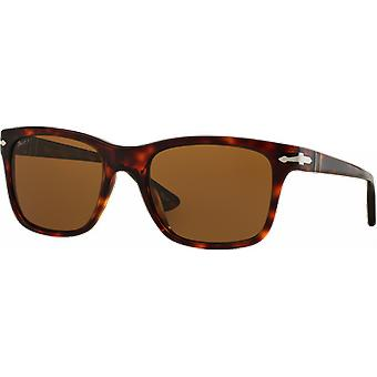 Persol 3135S polarized Brown tortoise