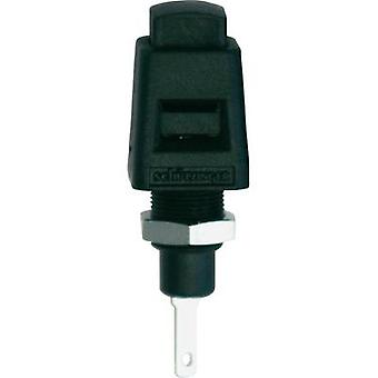 Spring-loaded mounting terminal Black 5 A Schützinger ESD 4323 SW 1 pc(s)