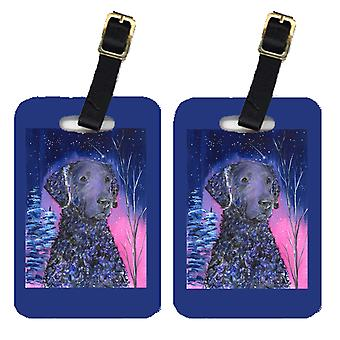 Carolines Treasures  SS8354BT Starry Night Curly Coated Retriever Luggage Tags P