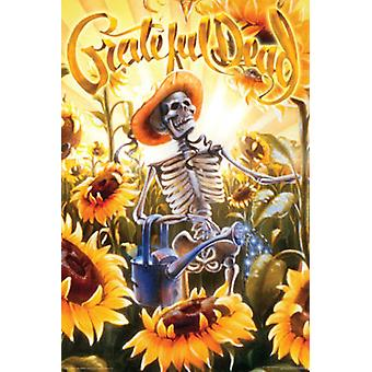 Grateful Dead - Grower Poster Poster Print