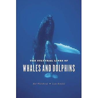 Het culturele leven van walvissen en dolfijnen