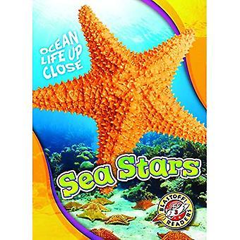 Sea Stars (Ocean Life Up Close)