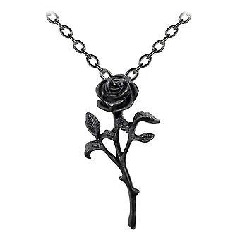 Alkemi Gothic Romance av Black Rose hänge