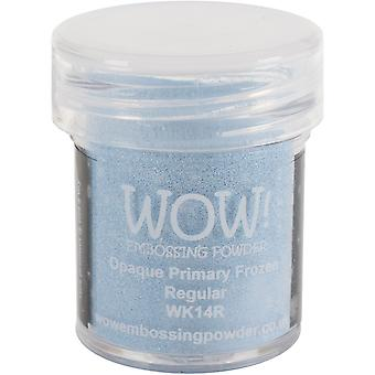 WOW! Embossing Powder 15ml-Frozen WOW-WK14R