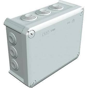 OBO Bettermann Wet-room junction boxes Light grey (RAL 7035) IP66