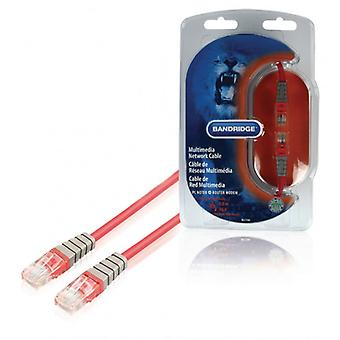 Bandridge CAT5e UTP network cable RJ45 (8P8C) male to RJ45 (8P8C) male