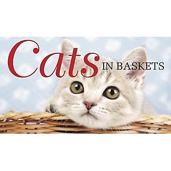 Cats in Baskets by Kat Scratching - 9781782745457 Book