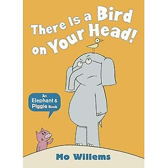 Det finns en fågel på huvudet!