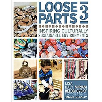 Loose Parts 3: Inspiring�Culturally Sustainable�Environments (Loose Parts)
