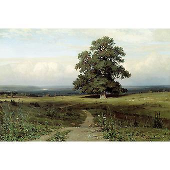 Landscape,Ivan Shishkin,60x40cm