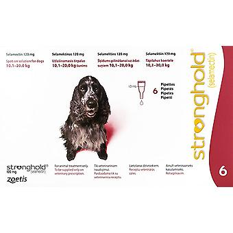 Stronghold Red Dogs 22-44lbs (10-20kg) - 6 Pack