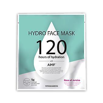Vitamasques Hydro Face Mask-Rose di Gerico (1 pc)